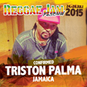 Triston Palma at the Reggae Jam Festival